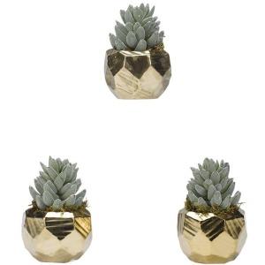 Flocked Aloe in Antique Gold Ceramic Planter – Set of 3