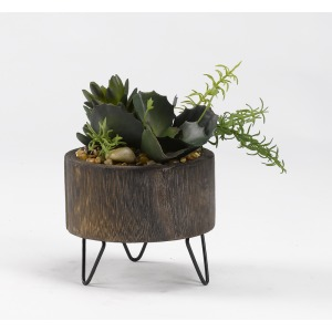 Assorted Succulents in Round Wooden Planter w/Wire Legs
