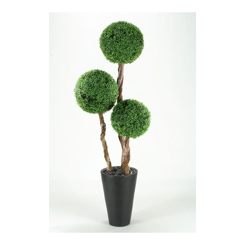 7' BOXWOOD TOPIARY IN TALL ROUND RESIN PLANTER