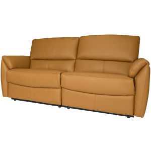 Bradley Reclining Condo Sofa