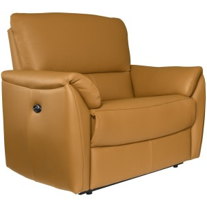 Bradley Reclining Condo Chair