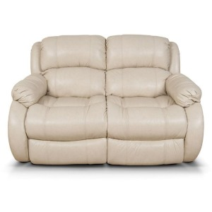 Litton Double Reclining Loveseat