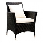 Leodore Arm Chair - Set of 2