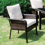 Shakira Arm Chair - Set of 2