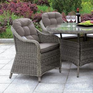 Canistota Arm Chair - Set of 2
