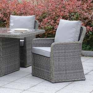 Bowdon Arm Chair - Set of 2