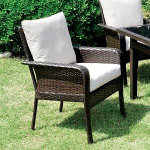 Shakira Arm Chair - Set of 2