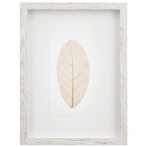 Brown Leaf w/White Frame