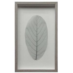 Gray Leaf w/Gray Frame