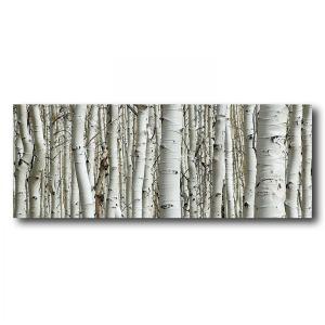Birch 24×64 HiDef Art Glass