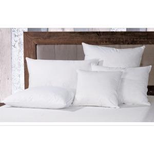 Down Euro Pillow Inserta
