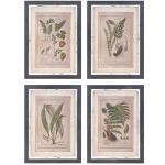 Botanical Print Wall Décor - Ast 4