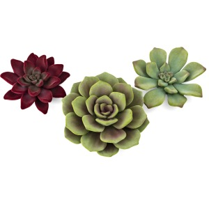 Sonoran Flocked Succulent Wall Decor - Set of 3