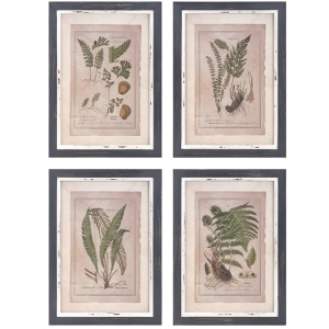 Botanical Print Wall Décor - Ast 4