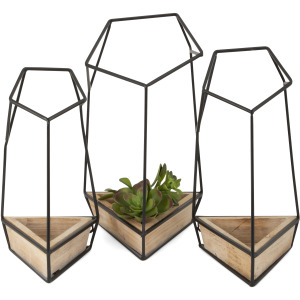 Felix Wall Planters - Set of 3