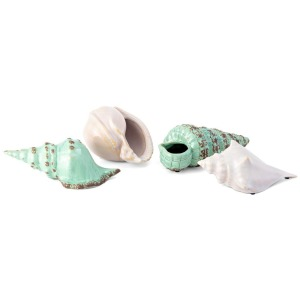 Sea Shells Collection - Set of 4