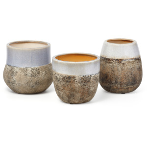 Robbe Planters - Ast 3