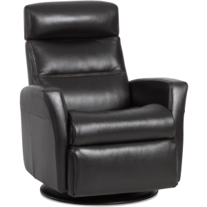 Divani Standard Size Recliner with Chaise