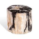 Lestari Petrified Wood Side Table