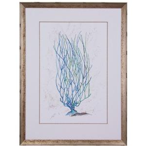 Dyann Gunter's Blue Coral II