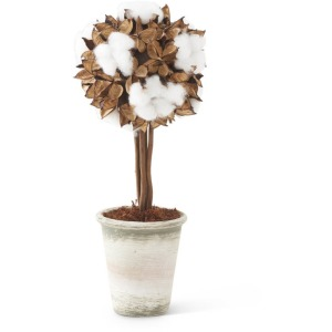 """16.5"""" Potted Cotton & Pod Topiary"""