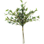 Botanica #2397