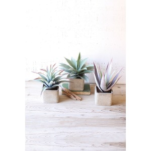 Large Artificial Succulents in Square Pots