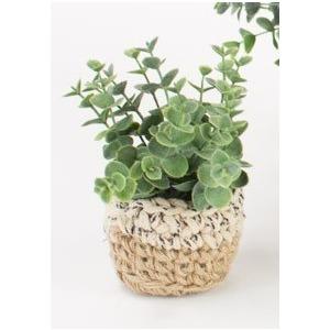 Artificial Eucalyptus Plant in Woven Pot - Small