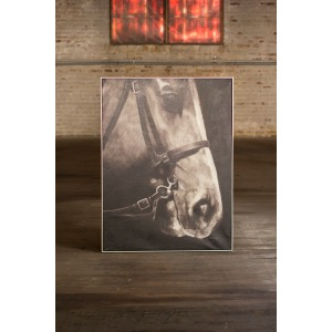 OIL PAINTING - BLACK AND WHITE SIDE VIEW HORSE WITH SILVER FRAME