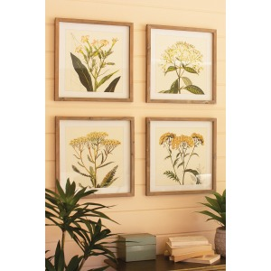 Framed Flower Prints Under Glass - Set of 4