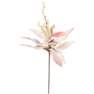 Botanica #1304