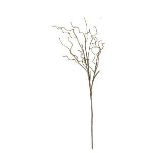 Botanica #2319