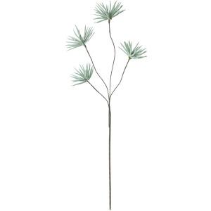 Botanica #416