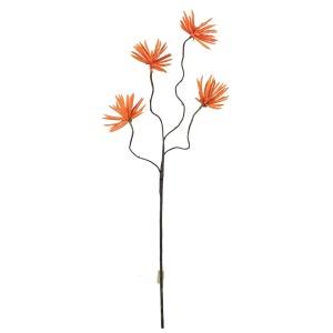 Botanica #637