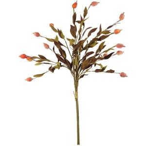 Botanica #2398