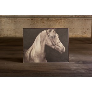 ARABIAN HORSE WITH SILVER FRAME