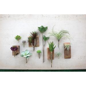 Artificial Wispy Aloe Plant
