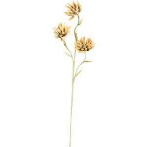 Botanica #2307