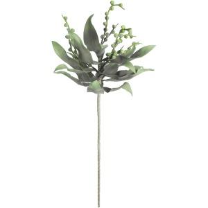 Botanica #2194