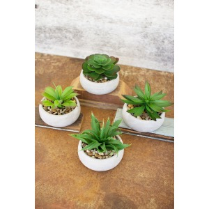 Artificial Succulents In Low Round Cement Pots - Set of 4