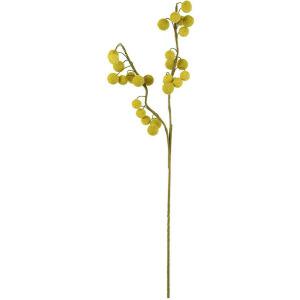 Botanica #2442