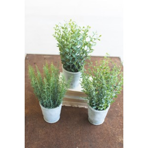 Artificial Herbs in Cement Pots