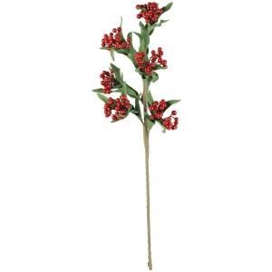 Botanica #3159
