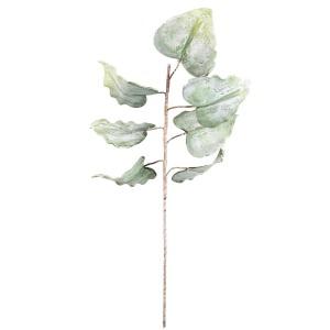 Botanica #1159