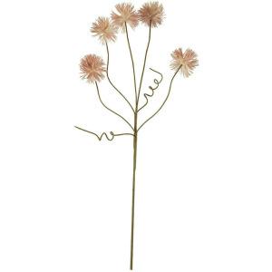Botanica #2375