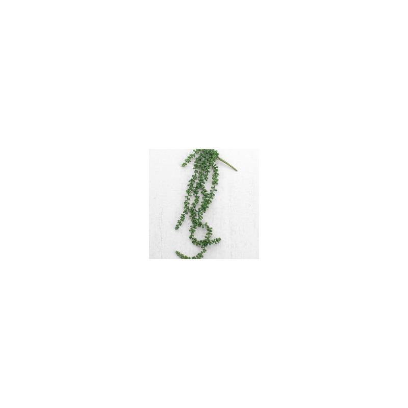 ARTIFICIAL NECKLACE FERN SUCCULENT 29