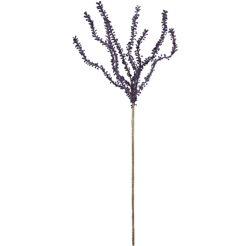 Botanica #640