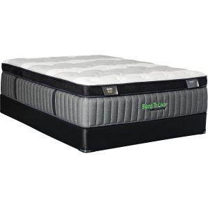 Sleep To Live 900 Pillow Top