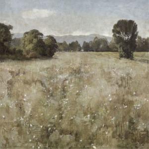 Serene Landscape II