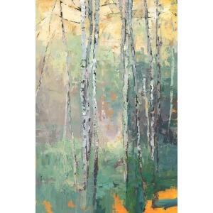 Birch Clearing
